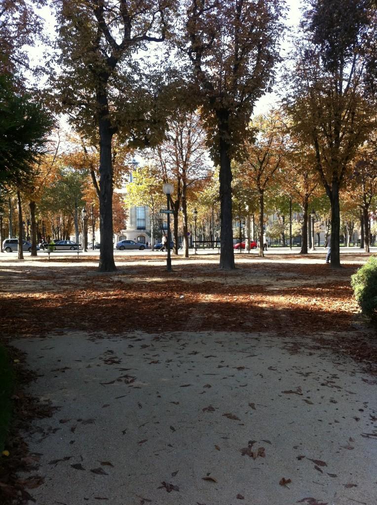 Herbst an der Champs-Elysées